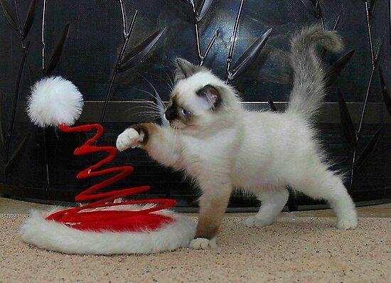Santa's Helper (No Words) by Marjorie Wallace