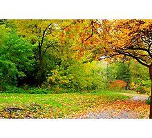 Autumn Season Photographic Print