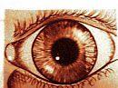 Eye See You by Jillian
