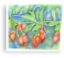 goji berries Canvas Print