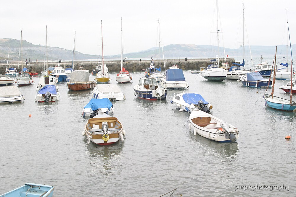 Boats in Lyme Regis Harbour by purplephotography