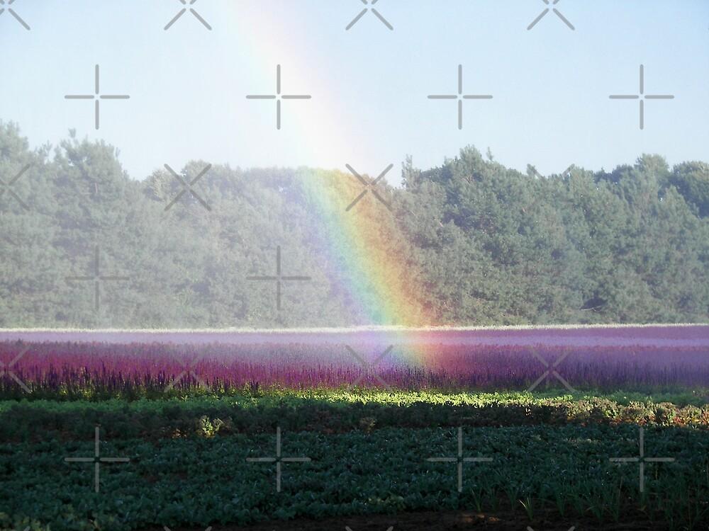 Purple Rain by Maria Dryfhout