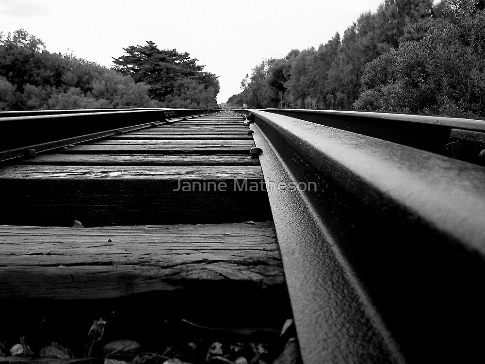 where is life taking me? by Janine Matheson