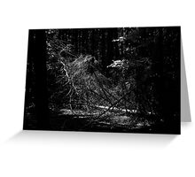 Tree Web Greeting Card