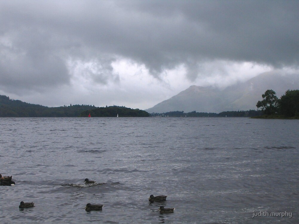 Storm over the lake by judith murphy