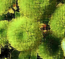 Green flower heads by judith murphy