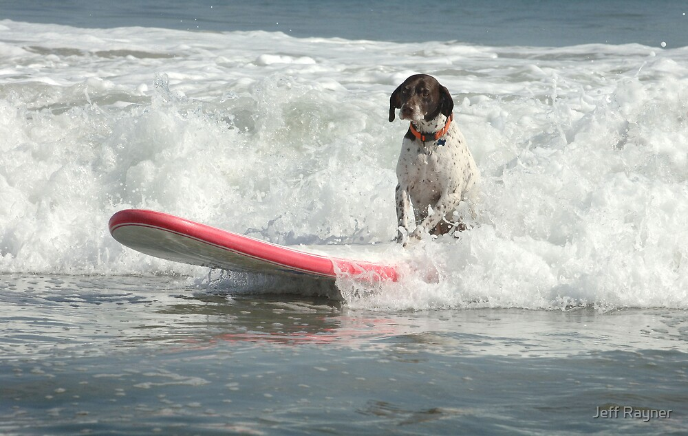 Surfs Up by Jeff Rayner