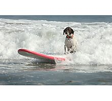 Surfs Up Photographic Print