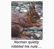 Norman quietly nibbled his nuts ... by michelleduerden