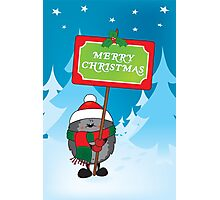 Merry Christmas everyone Photographic Print