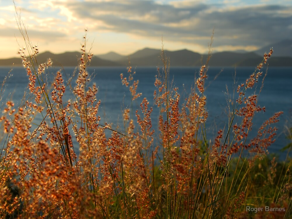 Kuendu Dreaming, New Caledonia by Roger Barnes