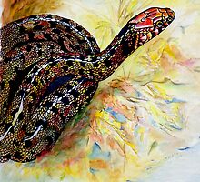Corn Snake by Margaret Platt