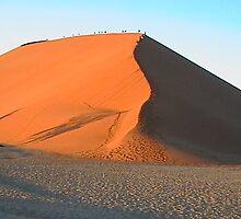 Africa - Namibia by Amelia Lemmon