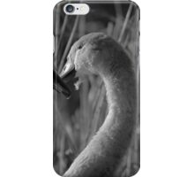 Swans Loveheart iPhone Case/Skin