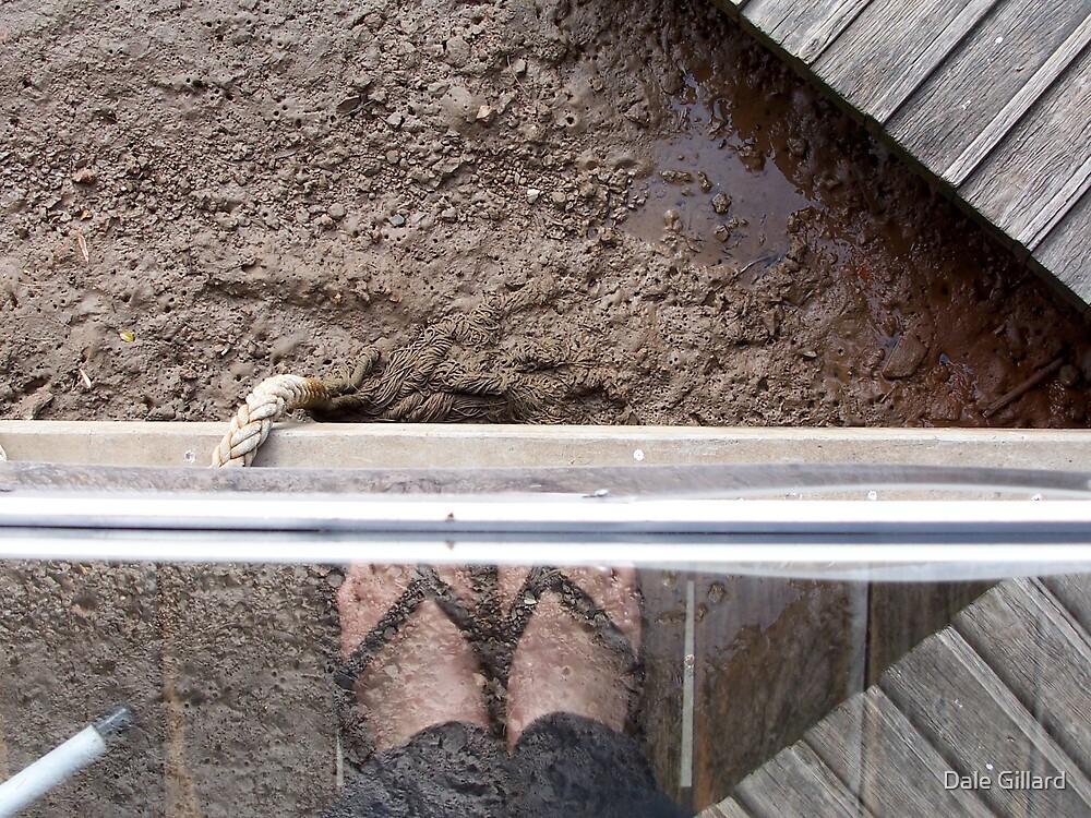 Muddy feet by Dale Gillard