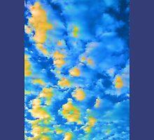 Sky 2, Port Richey, FL Unisex T-Shirt
