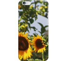 Sum,Sum Summertime iPhone Case/Skin