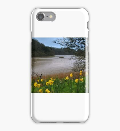 """ Along Narcissi Creek "" iPhone Case/Skin"