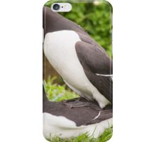Mr & Mrs Razorbill sharing a private moment iPhone Case/Skin