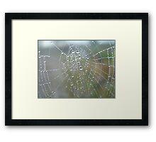diamonds on web 2 Framed Print
