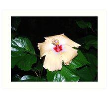 Shiney Leaves & Flower Art Print