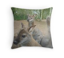 Wallaby in the picture? Throw Pillow