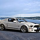 2014 Shelby Mustang GT500 by DaveKoontz