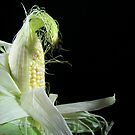 Corn Silk by Maria Dryfhout