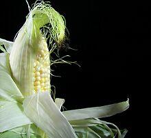 Corn Silk by Maria Dryfhout