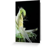 Corn Silk Greeting Card