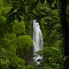 Dominica Falls II by John Harrison