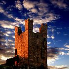 The Tower by Bruce Halliburton