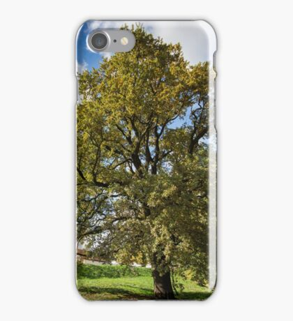 Colors of the fall iPhone Case/Skin