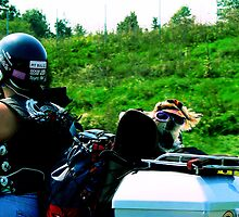 #203  Doggie Biker  #1 by MyInnereyeMike