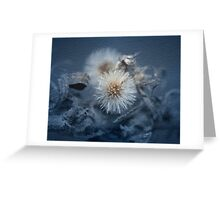 Dandelion Blues still-life Greeting Card