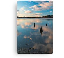Fence Posts - Somerset Dam Canvas Print
