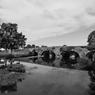 Kells Bridge , Co Kilkenny by Martina Fagan