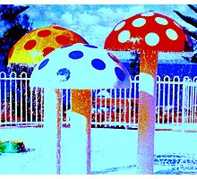Coloured Mushrooms Photographic Print