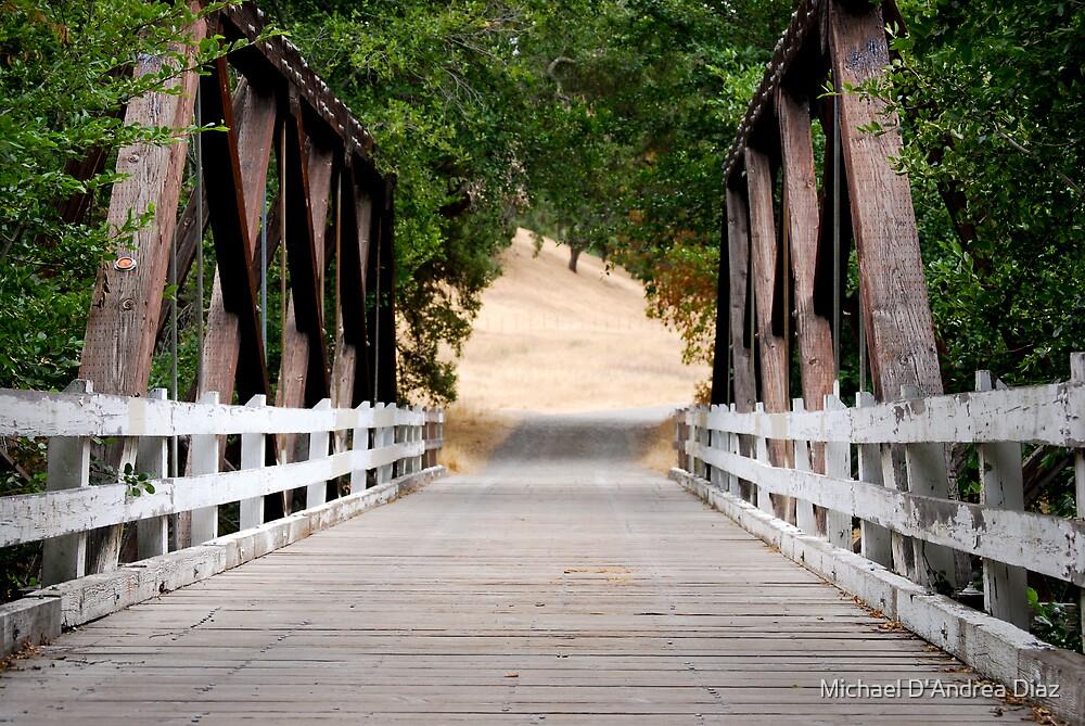 Bridge by Michael D'Andrea Diaz