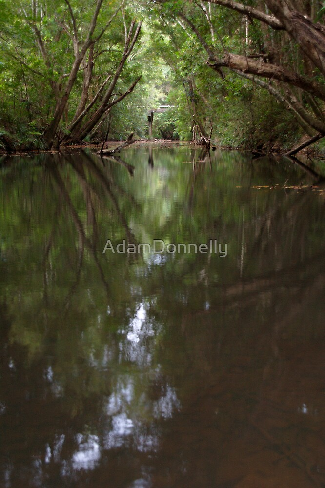 Stanley River by AdamDonnelly