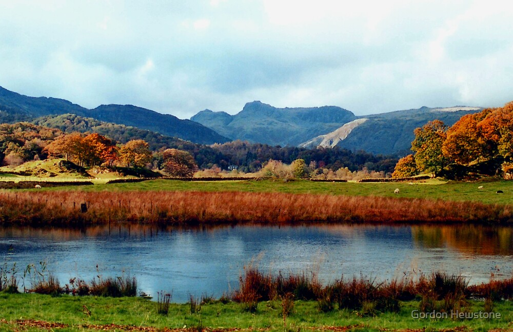 River Brathay and the Langdale Pikes by Gordon Hewstone