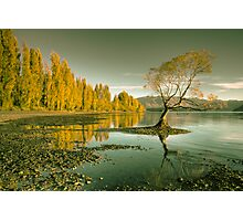 The Lake Photographic Print