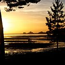 Golden Sunrise by desertman