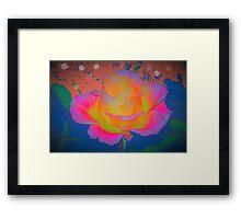 Rose color blast Framed Print