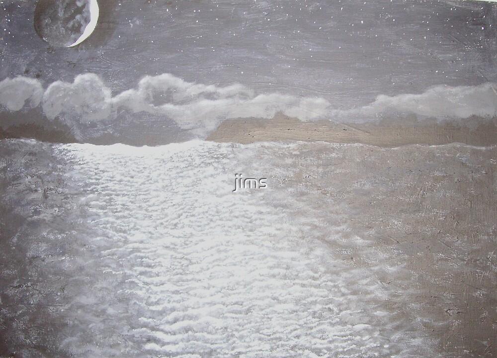 Moonlit ocean by jims