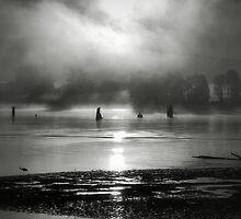 Morning Starlight by Darren Quarin