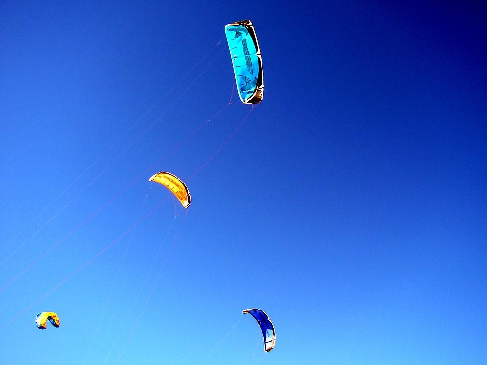 Kites by honey