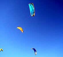 Kites by honey