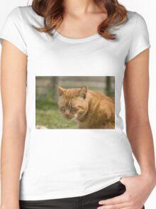 Cute sleepy cat Women's Fitted Scoop T-Shirt