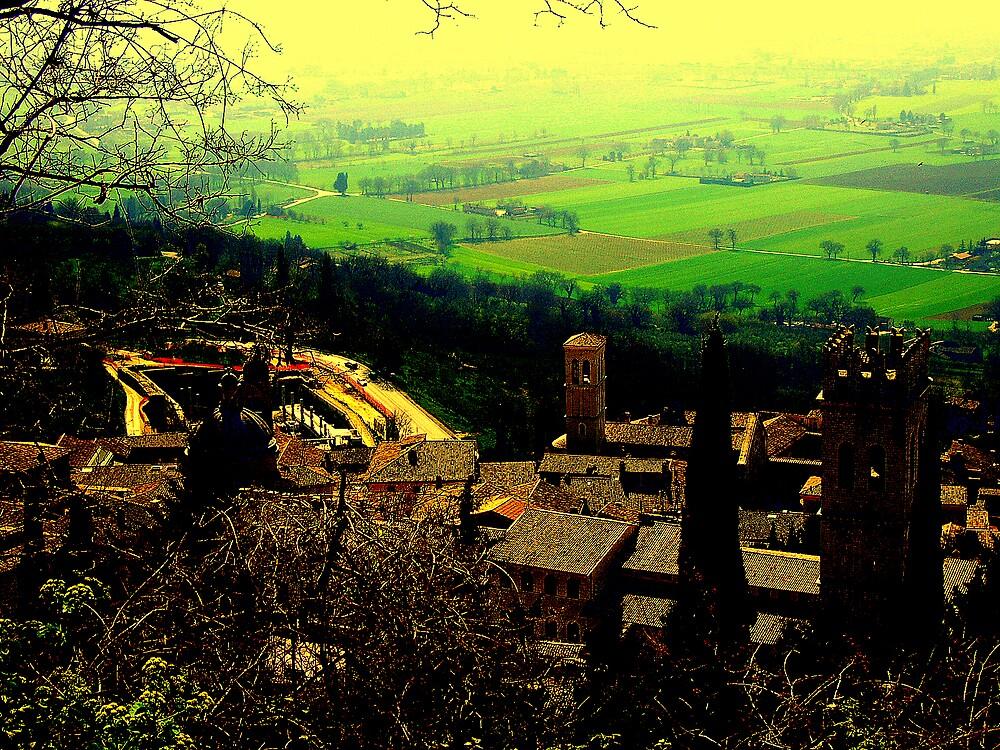 Sweet.....tuscany by honey